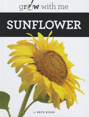 Sunflower By Riggs, Katie